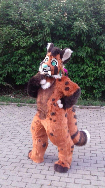fursuit-fullsuit-cat-toonystuff